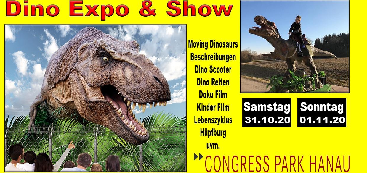 Bild von Dino Expo & Show