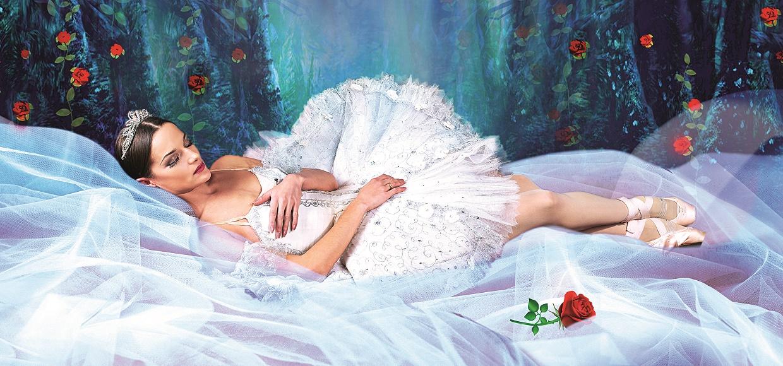 Bild von Ballett Dornröschen